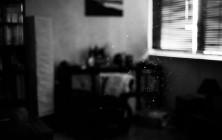 proie_ombre_38