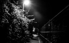 proie_ombre_62